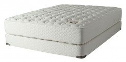 Shifman Chadwick Firm Mattress Set