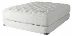 Shifman Hampshire Plush Queen Mattress Set