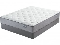 Dickenson Firm Twin Mattress Set