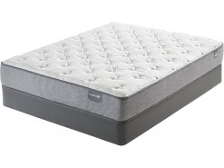 Dickenson Plush Mattresses