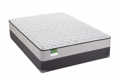 Marquess Firm Twin Mattress Set
