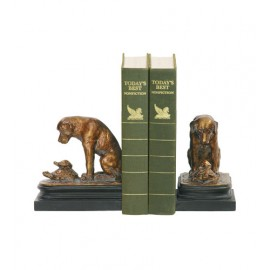 Pair Turtle Under Study Bookends