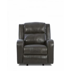 Robinson Power Recliner