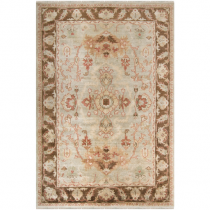 "Hillcrest Collection Sea Foam and Dark Brown 5'6"" x 8'6"" Rug"